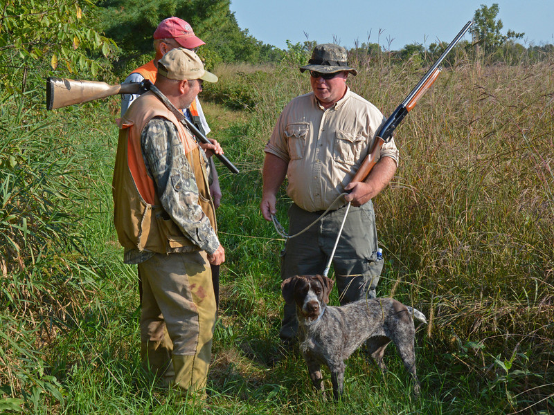 Heartland; Fall 2013,  Gonehuntin of Dutchman's Hollow with owner Kevin Nessa IHDT with judges Greg Hurtig and Jim Crouse (rear).