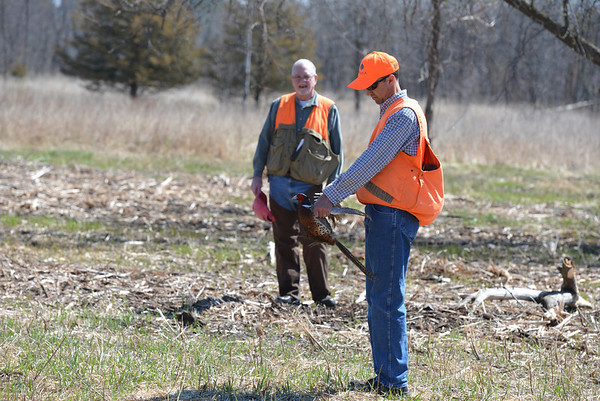 NAT Track of Pheasant Sequence