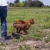 grca_open2012_0758