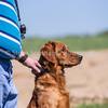 grca_puppy2012_0969