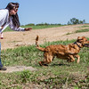 grca_puppy2012_0523
