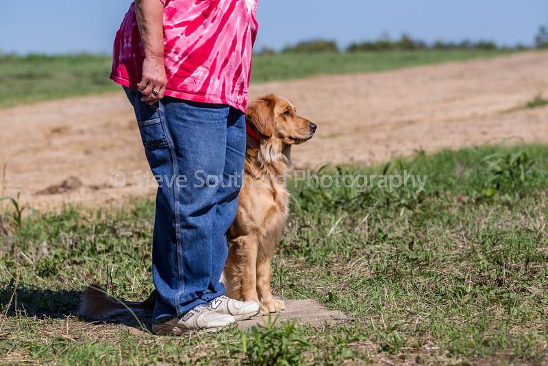 grca_puppy2012_0841