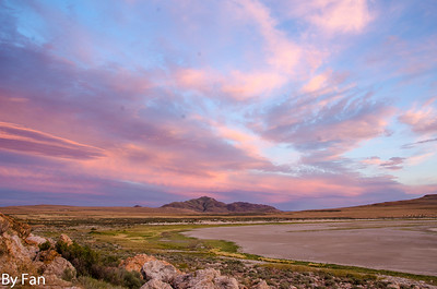 Fan_Wang-antelope-island3