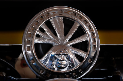 Indian_Motorcycle_Medallion-Terry_Madsen