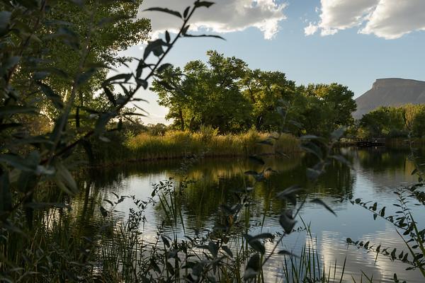 Rick_Cohen-Colorado_river_2