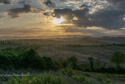 linda_daltonwalker-tuscansunset