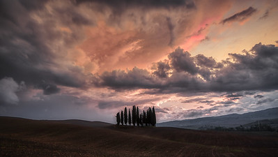 Brent_Ovard-Tuscany (5 of 18)