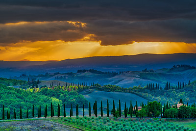 Brent_Ovard-Tuscany (9 of 18)