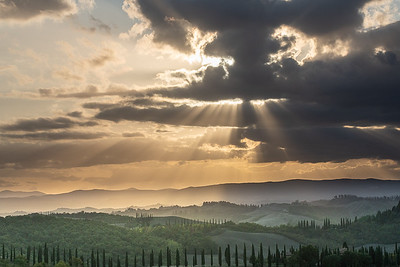 Brent_Ovard-Tuscany (8 of 18)