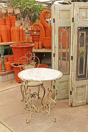 Carolyn _Dvorak-Garden shop setting