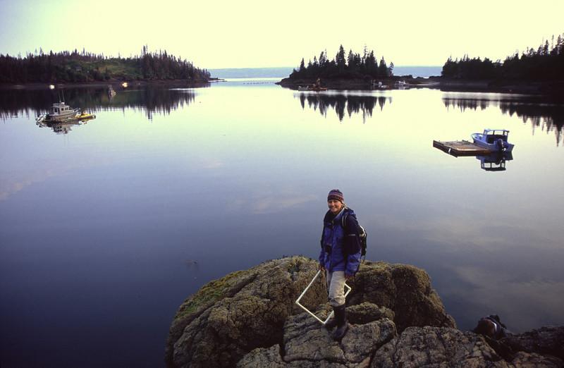 Intertidal sampling, Homer, Alaska