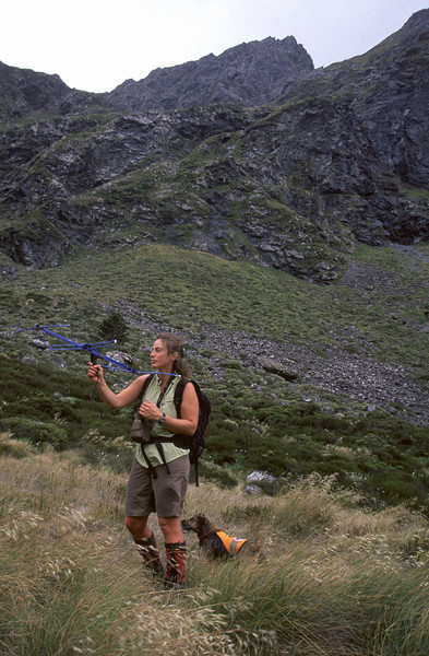 Radio telemetry in the Murchison Mountains