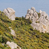 Granite outcrops
