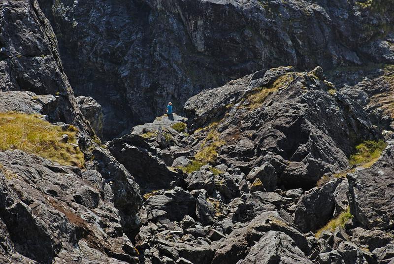 Looking for rock wren - dwarfed by the boulders in Moraine Creek