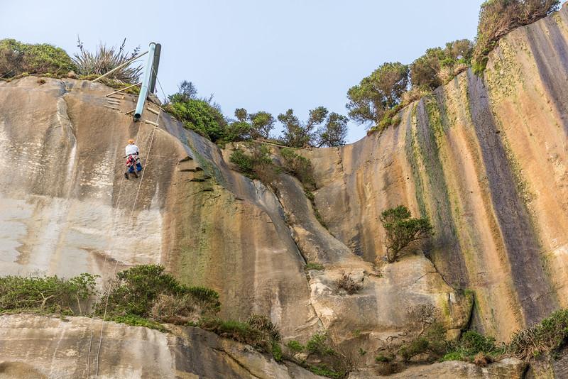 Jumaring back up the cliffs below the predator proof enclosure