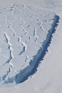 Large remnants of the Larsen B ice shelf, caught in the fast ice