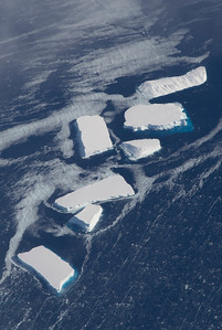 Icebergs near the Alison Ice Stream