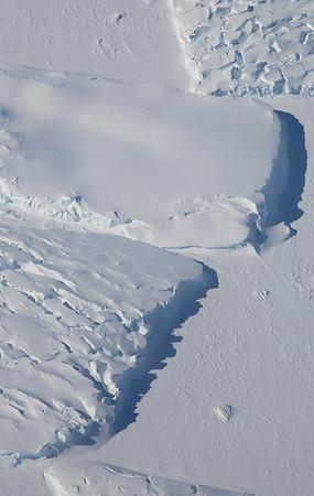 Icebergs (some with crevasses) locked in sea ice