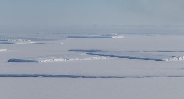 Tabular icebergs and sea ice near Land Glacier