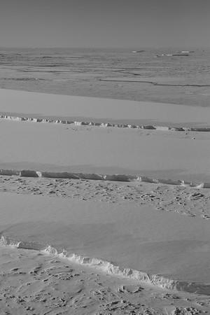 Icebergs just off the edge of Larsen C Ice Shelf