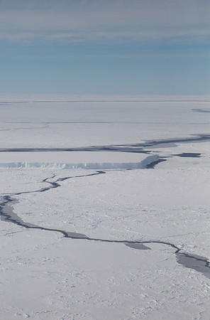 Sea ice around an iceberg in the Weddell Sea