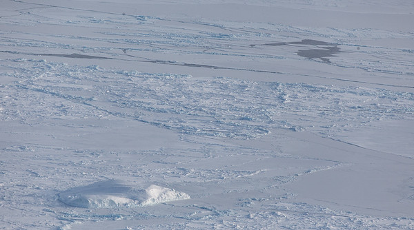 An iceberg and some scattered leads in Fram Strait
