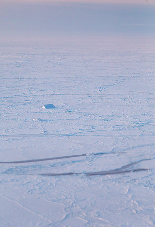 A lone iceberg amidst the sea ice