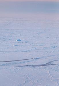A lone iceberg amidst the sea ice