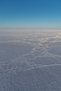 Consolidated sea ice floes along the beginning of the line
