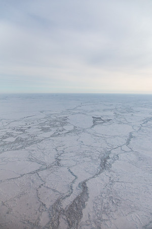 Sea ice just off the coast
