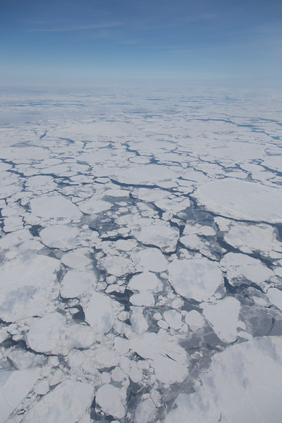 Separate sea ice floes in the Chukchi Sea