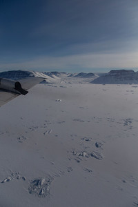 Sea ice and icebergs in Hagen Fjord