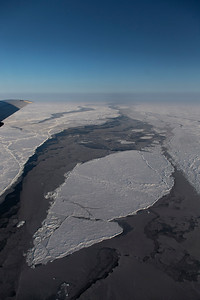 A set of ice floes surrounded by young ice in a lead