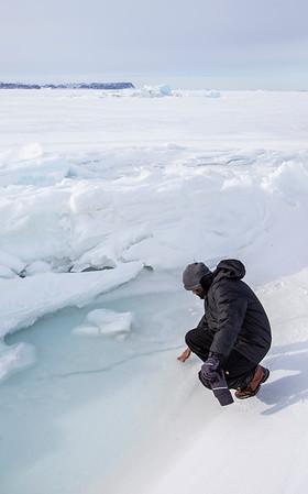 Teja testing out the sea ice tidal pool