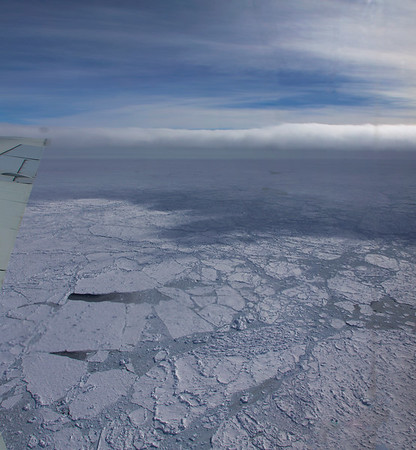 Consolidated sea ice floes in the Bellingshausen Sea