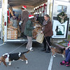 Donna and her Bassets helped distribute food