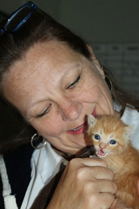 4 kittens 081