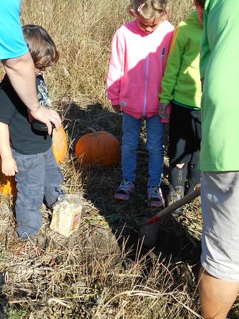 2014 - 1S Pumpkin Picking