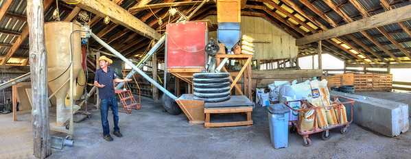 Chris explains his custom seed mill at Fern Road Farm. He is very passionate about his approach to raising pigs. Another iPhone 5 panorama.