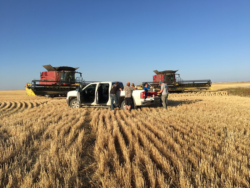 A farming crew takes a break from harvesting wheat for a meal in the field.  Farming is still a family business:  over 97 per cent of farms in Canada are family owned.  #farmfact
