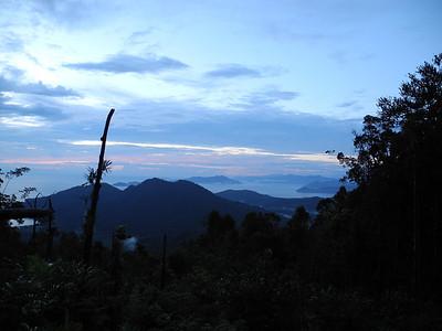 Kamiali 2011