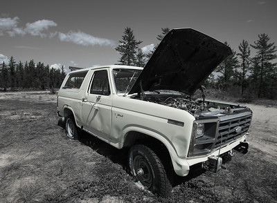 Busted Bronco