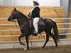 2190 stallions 4to6 15