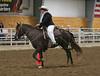 2194 stallions 4to6 15