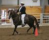 2195 stallions 4to6 15
