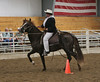 2193 stallions 4to6 15