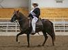 2204 stallions 4to6 15