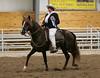 2202 stallions 4to6 15