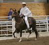 2266 stallions bozal17