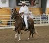 2258 stallions bozal17